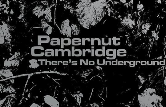 Papernut Cambridge release 'There's No Underground'